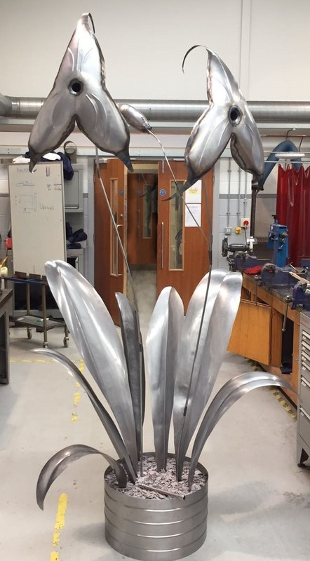 The orchid in the Nottingham College Engineering workshops
