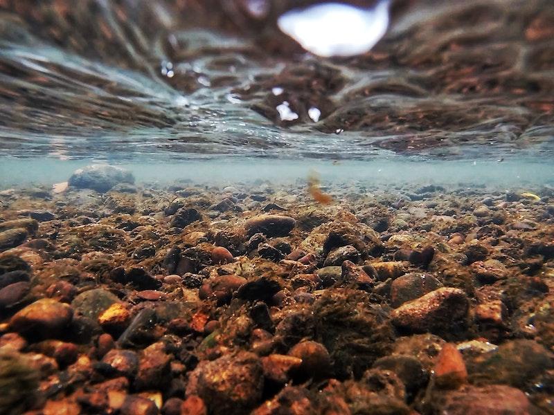 Underwater by Melissa Green, Nottingham College